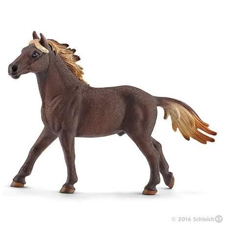 Semental Mustang