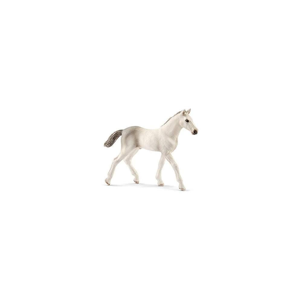 Potro Holsteiner