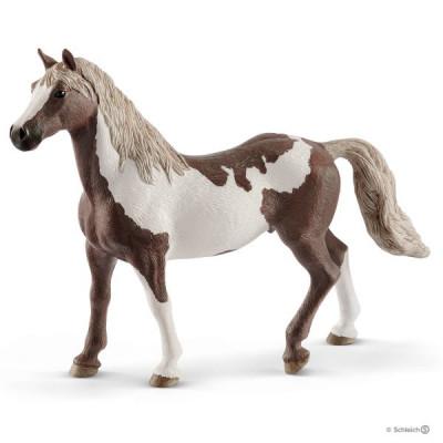Caballo capón Paint Horse