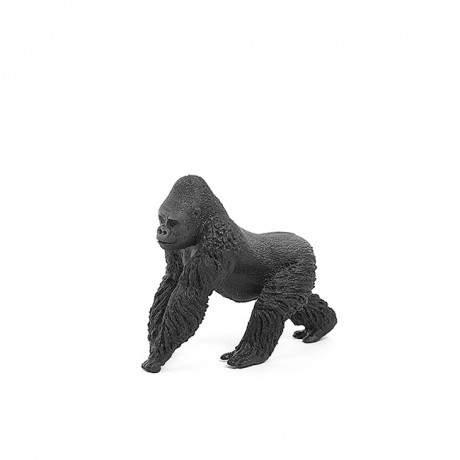 Gorila macho