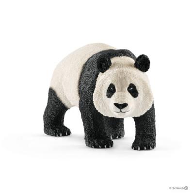 Oso panda gigante macho